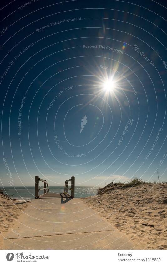 Sind gleich da... Himmel Natur Ferien & Urlaub & Reisen blau Pflanze Sommer Wasser Sonne Meer Landschaft ruhig Ferne Strand gelb Gras Wege & Pfade