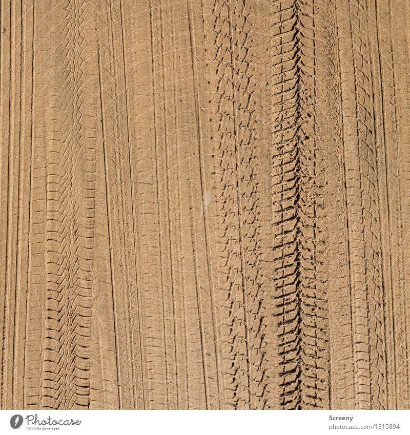 Strandautobahn Reifenspuren Sand fahren Güterverkehr & Logistik Verkehr Abdruck Muster Spuren Farbfoto Außenaufnahme Detailaufnahme Menschenleer Tag Licht