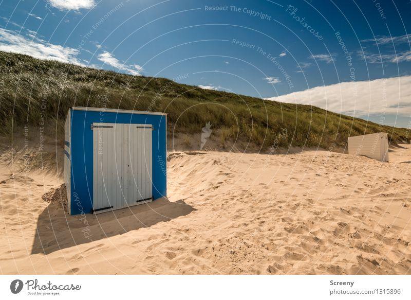 Beachbox Himmel Natur Ferien & Urlaub & Reisen Pflanze blau grün Sommer Erholung Meer Landschaft Strand gelb Gras Küste Sand Tourismus