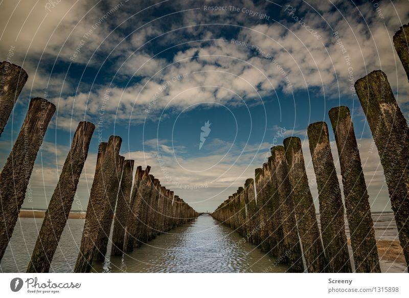 V-Ausschnitt Himmel Natur Ferien & Urlaub & Reisen blau Sommer Wasser weiß Meer Landschaft Wolken Ferne Strand Küste braun Horizont Tourismus