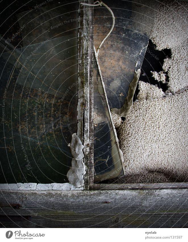 Schuld war eigentlich der Fensterputzer Gebäudereiniger Müll Teppich geschlossen Hütte kaputt Haus Holz Splitter Rest retro vergessen Rost Einbruch Kunst