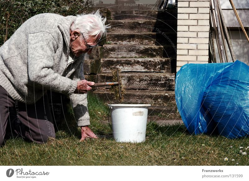 gibt noch viel... alt Freude Gras Garten Park Treppe Kraft Brille Großvater Arbeit & Erwerbstätigkeit Gartenarbeit hocken Eimer knien Sack robust