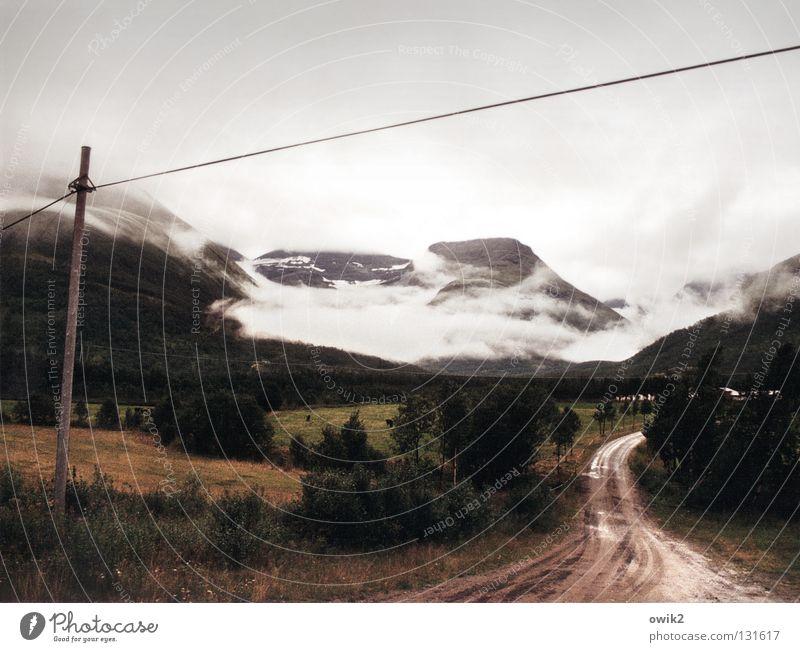 Dicke Luft Ferne Berge u. Gebirge Landwirtschaft Forstwirtschaft Kabel Natur Landschaft Horizont Wetter Nebel Baum Feld Straße Wege & Pfade dreckig groß kalt