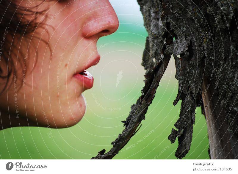 atem dem baum atmen Baum Baumrinde hauch Natur Detailaufnahme Gesicht