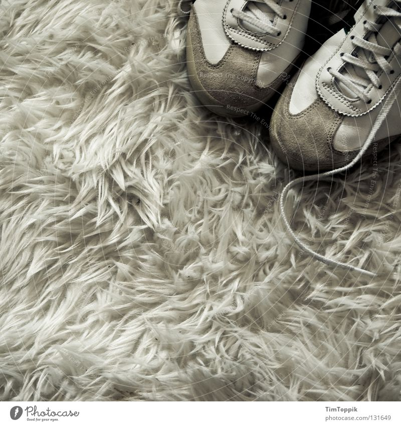 Sneak on my flocati weiß Schuhe Innenarchitektur Bekleidung weich Wohnzimmer Turnschuh Teppich Siebziger Jahre buschig Schuhbänder geschmacklos Flokati