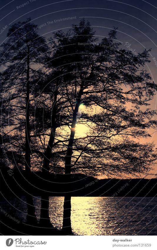150 - Abends am See Sonnenuntergang Abendsonne Baum Wolken Hügel Wald Wellen Reflexion & Spiegelung Wasserspiegelung Licht rot gelb Himmel Abenddämmerung Natur