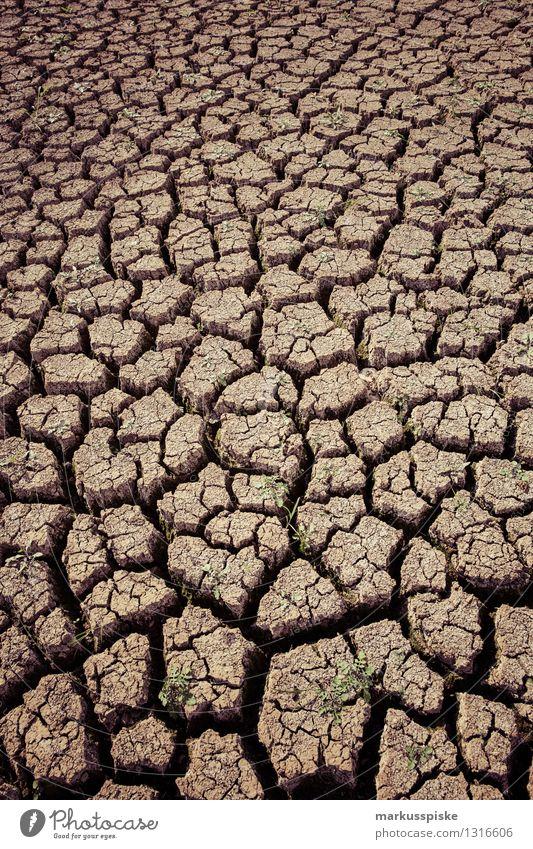 ausgetrocknet Ferien & Urlaub & Reisen Abenteuer Ferne Expedition Camping Landwirtschaft Forstwirtschaft Umwelt Natur Landschaft Pflanze Tier Klima Klimawandel