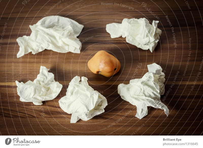 läuft bei dir, Nase Winter Mensch liegen einzigartig weiß Stimmung verschwenden Virus Erkältung ungesund Krankheit Allergie niesen Taschentuch Herbst Laminat