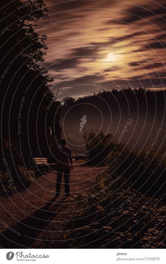 Vollmond maskulin Mann Erwachsene 1 Mensch Wolken Nachthimmel Wald Berge u. Gebirge Wege & Pfade beobachten Blick stehen leuchten warten bedrohlich dunkel hell