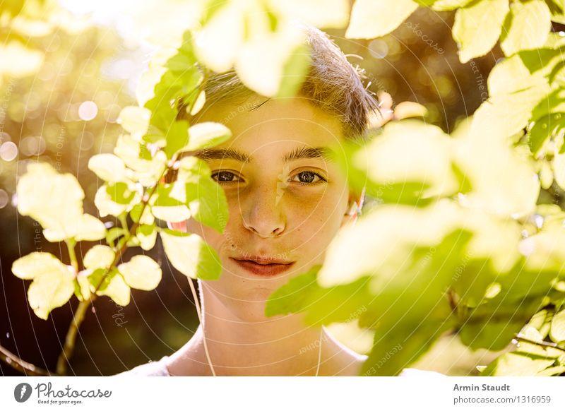 Porträt hinter Blättern Mensch Natur Jugendliche schön Sommer Baum Junger Mann Blatt Freude Leben Frühling Gefühle Stil Gesundheit Glück Lifestyle