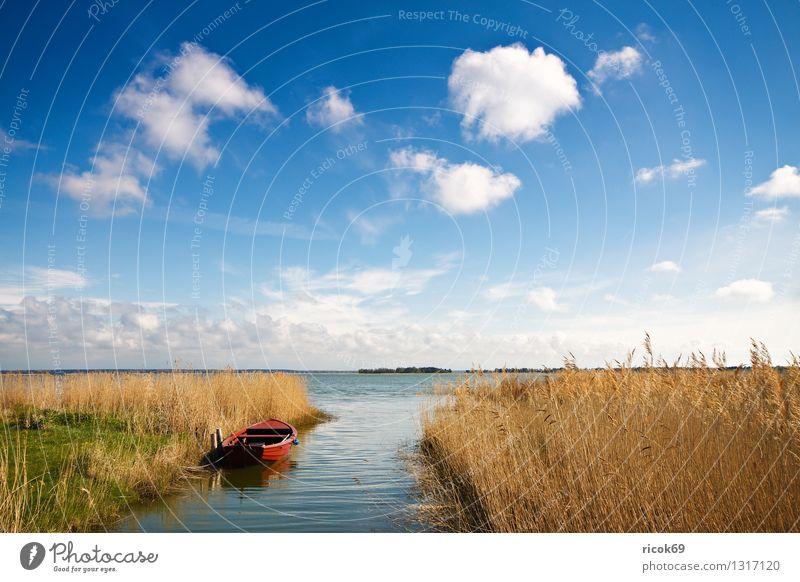 Am Bodden Ferien & Urlaub & Reisen Natur Landschaft Wasser Wolken See Wasserfahrzeug blau gelb rot Romantik Idylle Tourismus Schilfrohr Gewässer Himmel