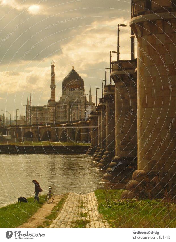 Elbstrand-Morgenland Fabrik Mensch Wasser Himmel Wolken Wärme Fluss Industrieanlage Brücke Hund Stimmung Säule Dresden Elbe Zigarettenfabrik Stimmungsbild Abend