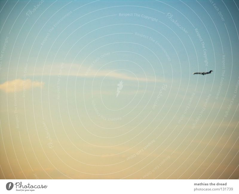 DERZEITIGE REISEHÖHE 2000 METER Himmel blau Ferien & Urlaub & Reisen schön Wolken ruhig Ferne gelb Wärme Wege & Pfade klein Luft Linie Kraft fliegen Flugzeug