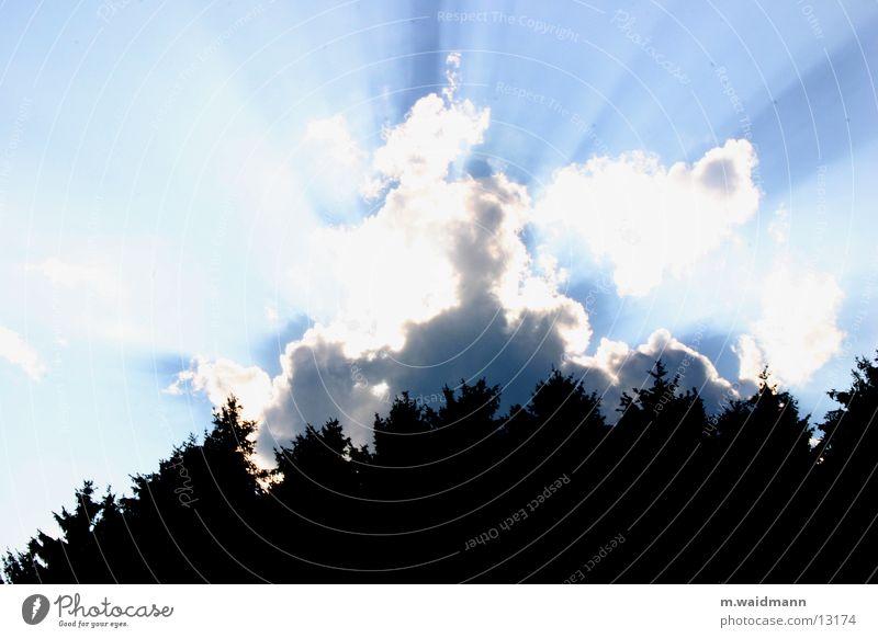 richtig doller weltuntergang Baum Sonne Sommer Wolken Wald Beleuchtung Durchbruch