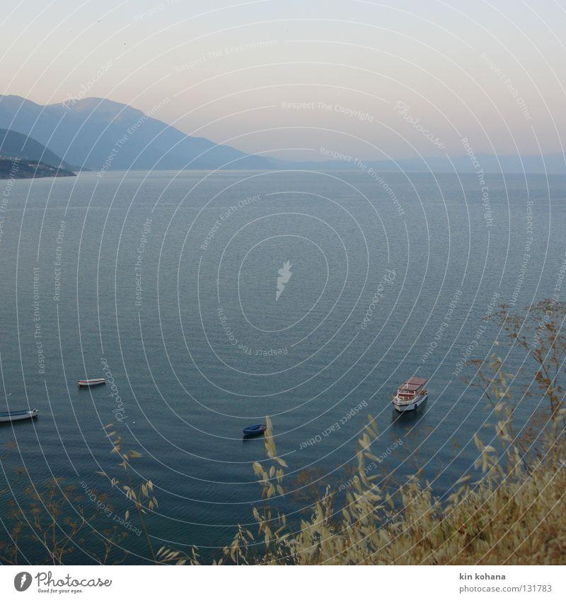 morgentau See Wasserfahrzeug kalt frisch dunkel Wellen Horizont Gras Halm Stroh gelb trocken Gefühle Sommer Morgen aufwachen schlafen ruhig Vergänglichkeit