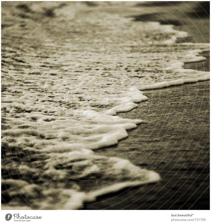 wie flocken von schnee II° schön Meer Strand ruhig Einsamkeit Traurigkeit Küste Sehnsucht Spanien Schaum Gischt poetisch