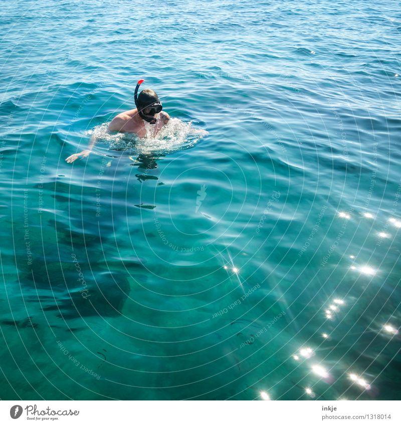 Meerjungmann Lifestyle Freude Freizeit & Hobby Ferien & Urlaub & Reisen Tourismus Sommer Sommerurlaub Sonne tauchen Schnorcheln Tauchgerät Taucherbrille Mann