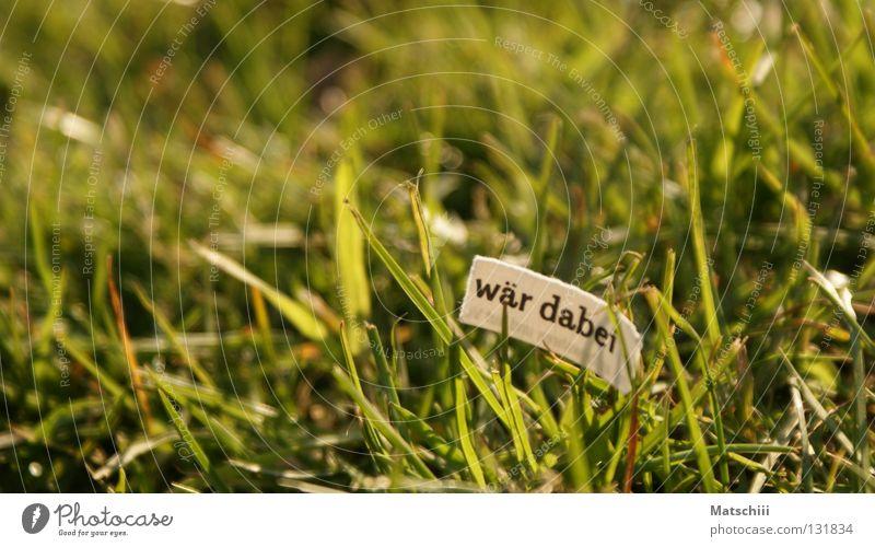 Pink Wiese Gras Zeitung Frühling Physik rosa Spielen Langeweile Freizeit & Hobby Buchstaben Schriftzeichen Leben Focus Makroaufnahme Wärme Dabei