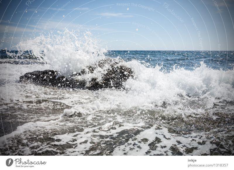 Korsische Welle Natur Urelemente Wasser Himmel Horizont Sommer Wind Wellen Küste Meer Gischt nass wild Kraft Wassermassen Flut Felsen spritzen schäumen