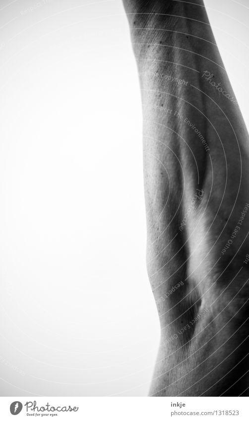   Mensch Erwachsene feminin Sport maskulin Kraft Arme Haut Fitness dünn sportlich stark Sport-Training Sportler Muskulatur Nervosität