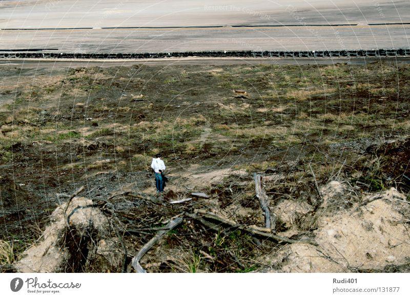 tierfreund Tier Einsamkeit Sand springen Wüste Überraschung Säugetier Fotograf Reh Bergbau