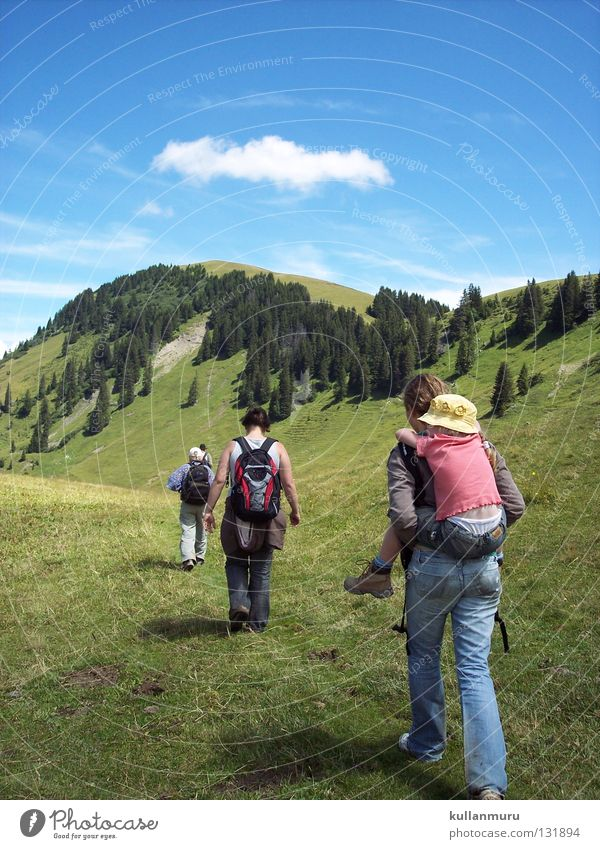 Gemeinsam Vorwärts wandern Ferien & Urlaub & Reisen Zusammensein Schweiz Wolken schön geführt Träger zielstrebig Wald Berghang Gras frisch grün flach Wiese