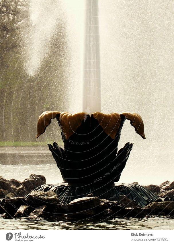 Die große Waserfontaine Wasser Ferien & Urlaub & Reisen Garten Park Kunst Romantik Kultur Brunnen Hannover Niedersachsen Wasserfontäne Herrenhausen-Stöcken
