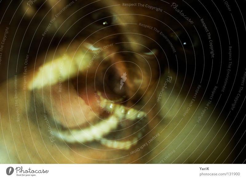 schnappauf grün rot dunkel lachen braun Mund gefährlich bedrohlich Gebiss Filmindustrie beobachten Wut gruselig schreien Kontrolle Geister u. Gespenster