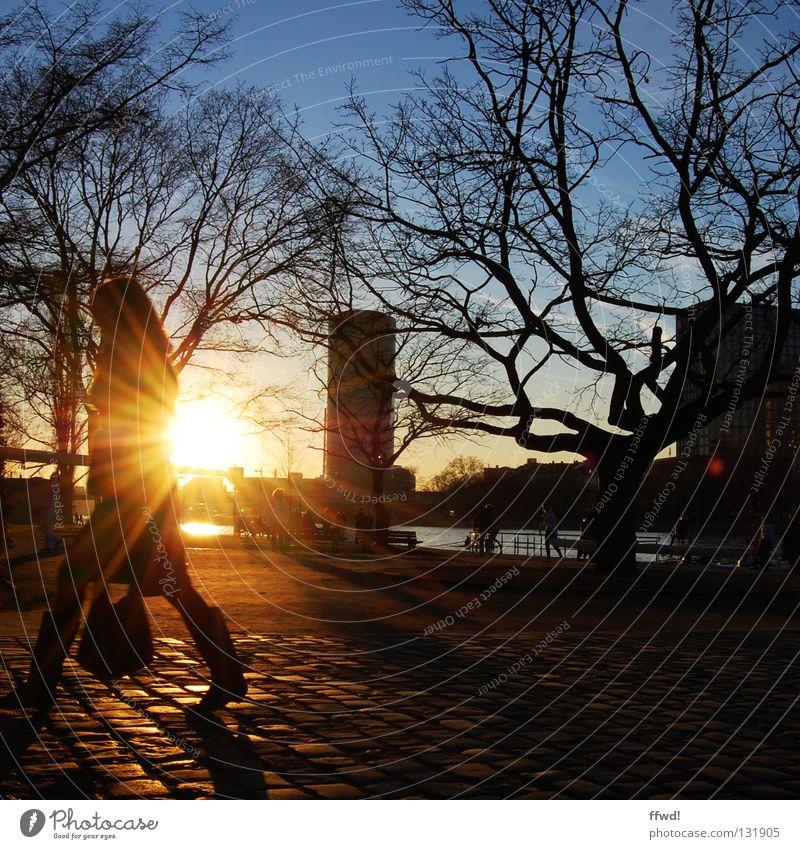 promenade Frau Mensch Baum Sonne Winter Stimmung gehen laufen Aktion Fluss Spaziergang Ast Verkehrswege Kopfsteinpflaster Flussufer