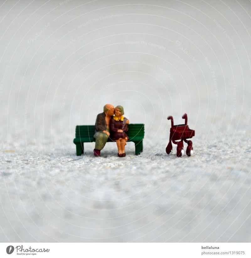 Omi & Opi in love Mensch Frau Mann Erwachsene Leben Liebe Gefühle Senior feminin Glück Stimmung Paar maskulin Zufriedenheit sitzen 45-60 Jahre