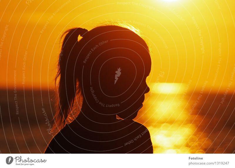 Mädchensilhouette am Meer im Sonnenuntergang Mensch feminin Kind Kindheit Kopf Haare & Frisuren Nase 1 Urelemente Wasser Sommer Schönes Wetter Wärme Küste nah