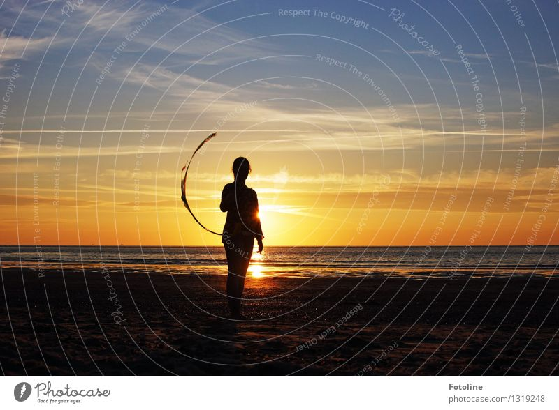 Im Sonnenuntergang Mensch feminin Mädchen Junge Frau Jugendliche 1 Umwelt Natur Landschaft Urelemente Erde Wasser Himmel Wolken Sommer Schönes Wetter Küste