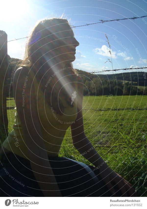 wonderful place* Natur Jugendliche Himmel Sonne grün blau Sommer Wolken Einsamkeit Wiese Gras Denken Landschaft Weide Zaun Gedanke