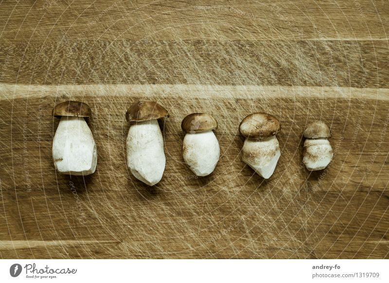Steinpilze schön Umwelt Herbst Gesundheit Lebensmittel braun Ernährung genießen Kochen & Garen & Backen lecker Bioprodukte Holzbrett Pilz Vegetarische Ernährung