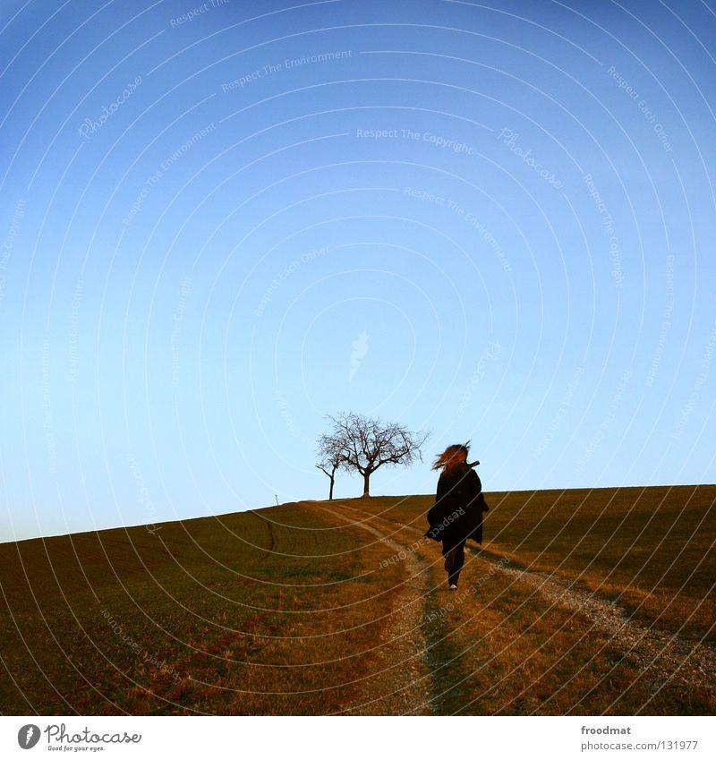 zurück in die zukunft Frau Himmel Natur blau grün schön Baum Sonne Freude Winter Einsamkeit Wolken ruhig Erholung Wiese kalt