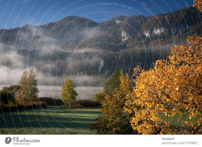 nöblick Ferien & Urlaub & Reisen Ausflug Berge u. Gebirge Natur Landschaft Pflanze Himmel Sonnenlicht Herbst Klima Wetter Nebel Herbstlaub Wald Hügel Alpen See