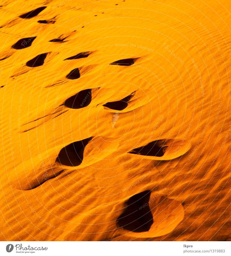 in der Sahara-Marokko-Wüste schön Ferien & Urlaub & Reisen Tapete Natur Landschaft Sand Schönes Wetter Urwald Hügel heiß braun gelb Einsamkeit Idylle wüst Düne