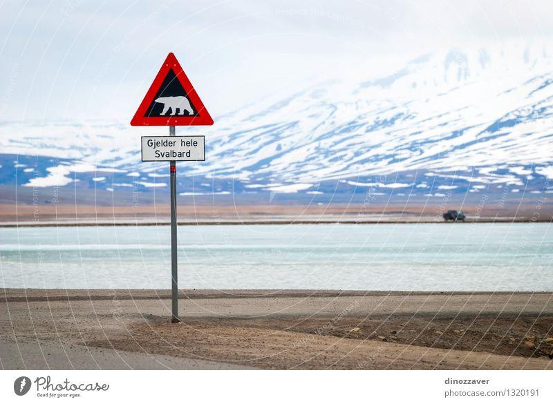 Eisbär Zeichen Himmel Natur Ferien & Urlaub & Reisen weiß rot Landschaft Wolken Tier Winter Berge u. Gebirge Straße Schnee wild Ausflug Abenteuer Sicherheit
