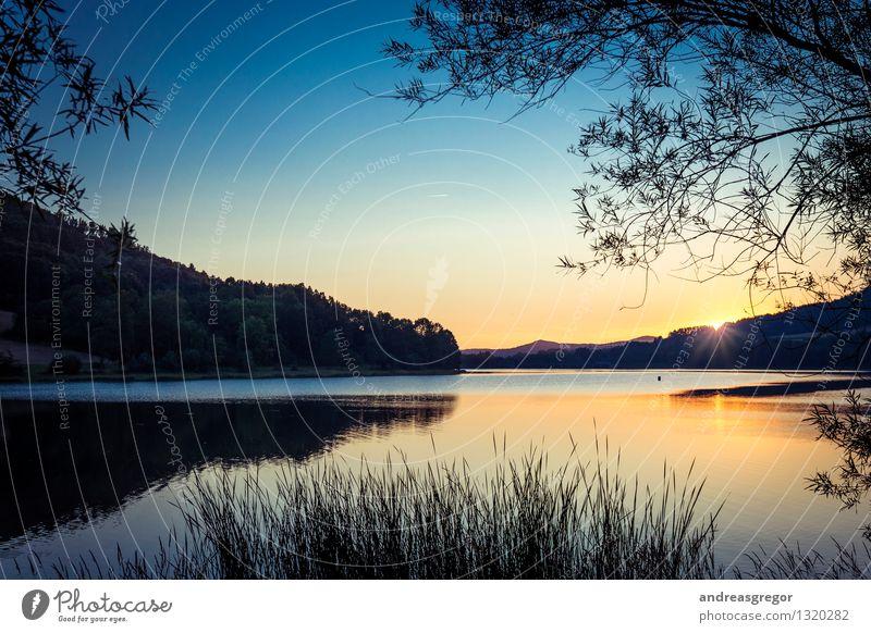Stauschee Umwelt Natur Landschaft Pflanze Wasser Himmel Wolkenloser Himmel Sonne Sonnenaufgang Sonnenuntergang Sonnenlicht Frühling Sommer Herbst Schönes Wetter