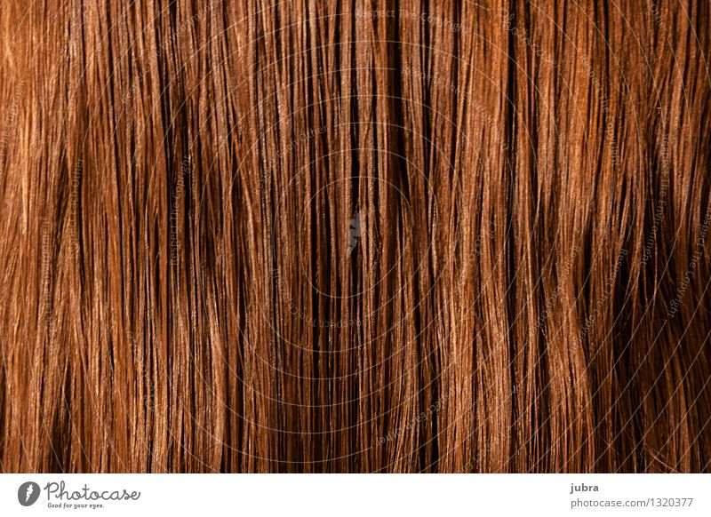 "Strähnen elegant Stil Design schön Haare & Frisuren Mensch feminin Kopf brünett blond langhaarig Duft fallen hängen ästhetisch dünn authentisch trocken ""kämmen"