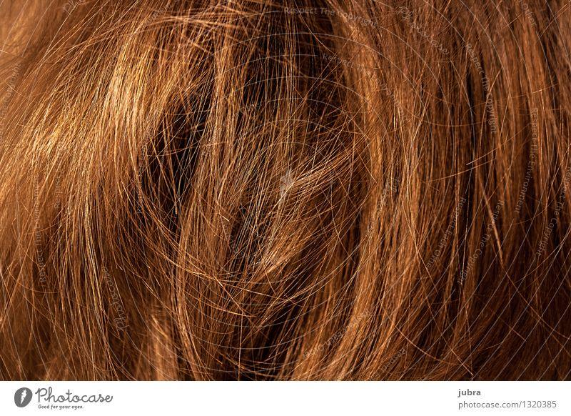 """Haariges Chaos elegant Stil Design schön Haare & Frisuren feminin Kopf brünett blond langhaarig Locken Perücke """"Wellen Wuschelkopf Strähnen Fein föhnen fliegen"""""""