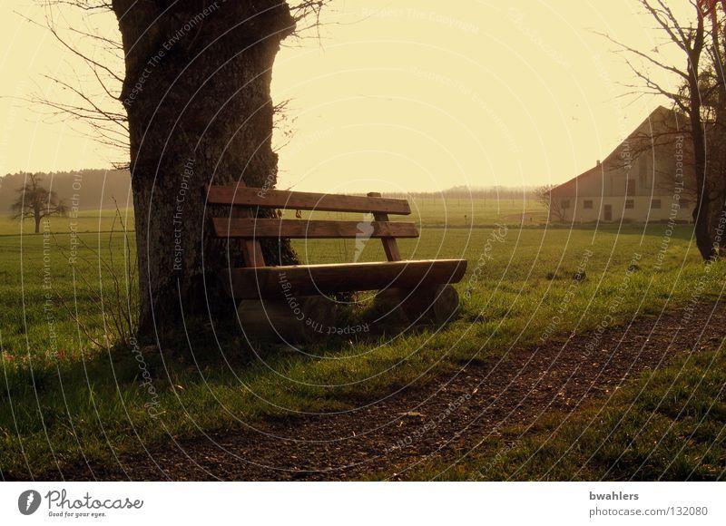 auf dem Land 2 Himmel Baum grün ruhig Haus Einsamkeit Wiese Gras Wege & Pfade Beleuchtung Nebel Bank Frieden Ast Bauernhof Landwirtschaft