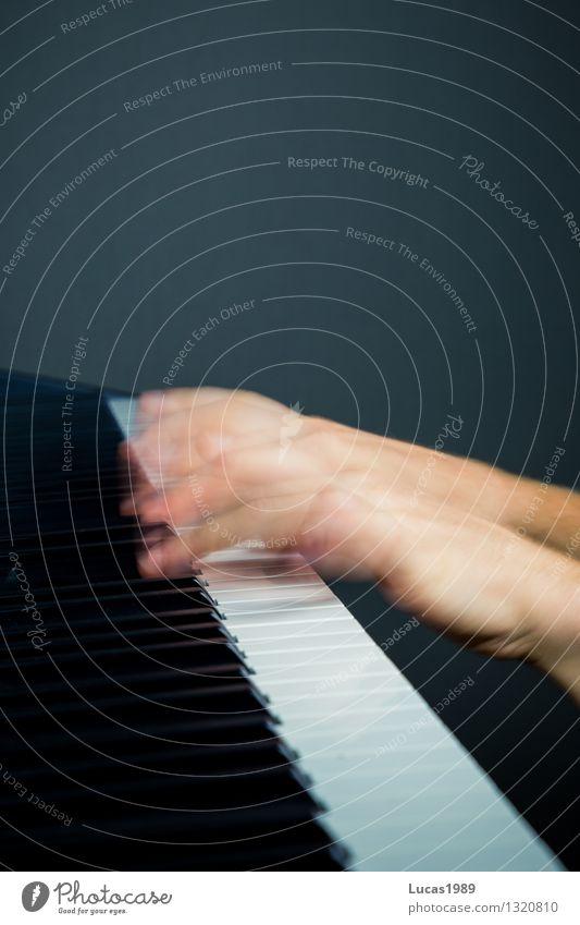 Flinke Finger Mensch Spielen Kunst Musik Geschwindigkeit Konzert Musikinstrument Klavier Musiker Schulunterricht üben Keyboard Musik hören Klavier spielen