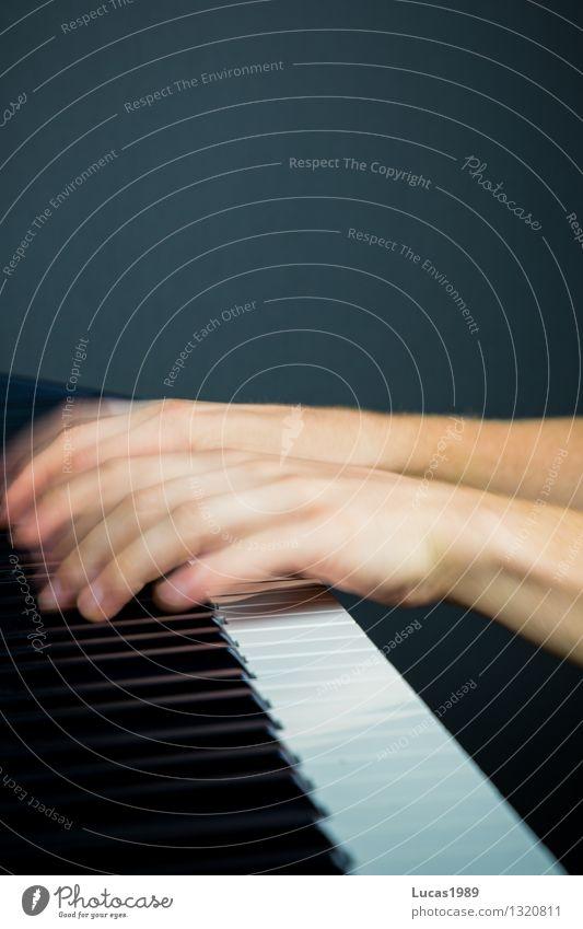 Lichtgeschwindigkeit Mensch Bewegung Spielen Kunst Musik Geschwindigkeit Finger Konzert Band Künstler Klavier Musiker üben Genauigkeit Orchester Keyboard