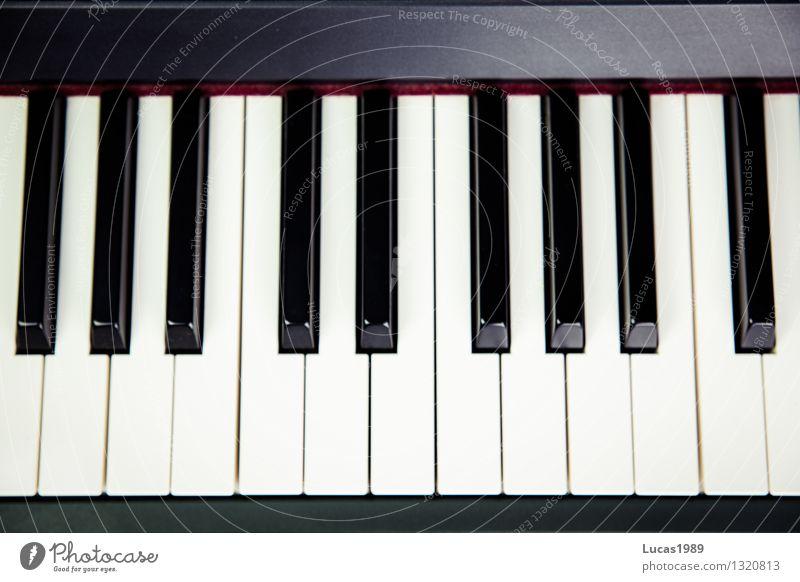Kla4 Kunst Musik Musik hören Konzert Musiker Klavier Klassik Jazz Flügel Keyboard schwarz weiß Klaviatur Musikunterricht musikschule Schüler üben Farbfoto