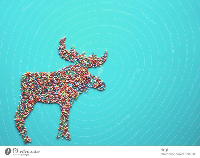 Elchfigur dekoriert aus kleinen bunten Zuckerkügelchen auf türkisem Hintergrund Lebensmittel Süßwaren Streusel Zuckerstreusel Weihnachten & Advent Tier Zeichen