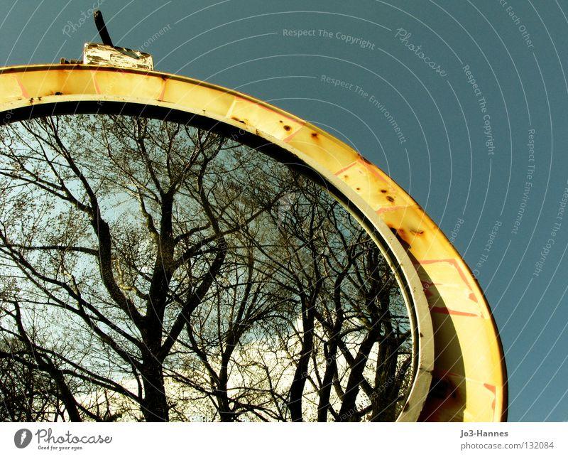 Bilderrahmen alternativ Spiegel Rückspiegel Spiegelbild Straßennamenschild Verfall Baum Wald Sträucher Gefäße netzartig organisch rückwärts Halbkreis rund Wende
