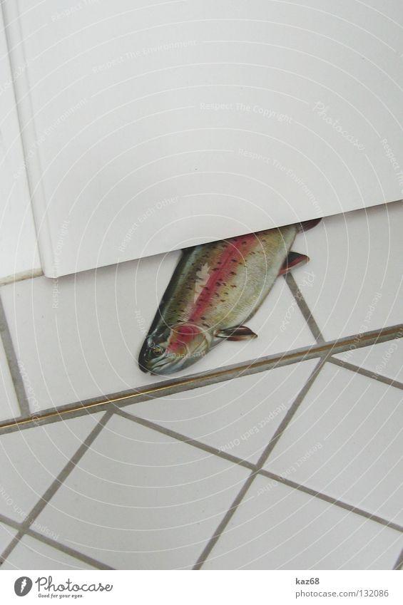 hallooooo Wasser Meer Tier Luft Kraft Tür geschlossen leer Fisch Energiewirtschaft Bad Fluss kaputt dünn Toilette Fliesen u. Kacheln