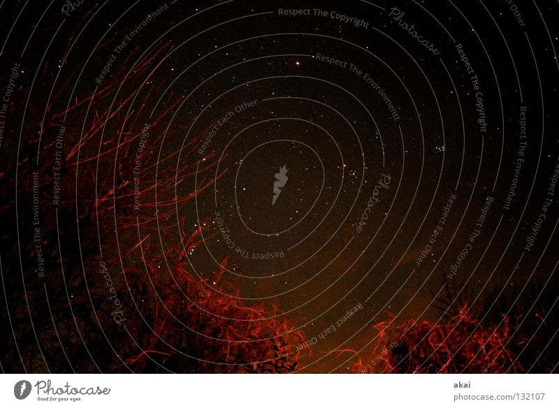 Starry Starry Night Himmel Natur blau Farbe ruhig Linie oben Perspektive hoch Stern Frieden Paradies Geometrie himmelblau Sternenhimmel Standort