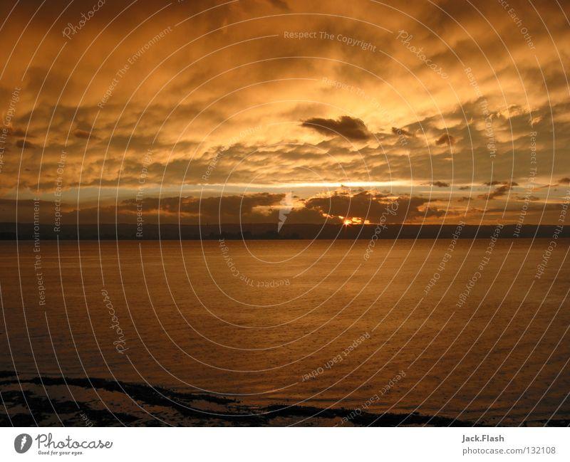 Sonnenuntergang am Ammersee See Stimmung Licht Herrsching am Ammersee Bayern Wolken Himmelskörper & Weltall Wasser Landschaft Freiheit schön orange